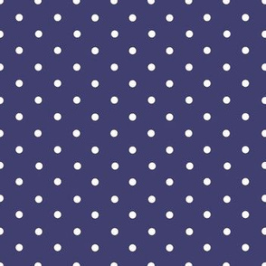 White Spots on Navy