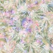 Rcannabishope_4spf_shop_thumb