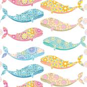 whale06