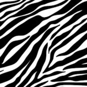 Digital Zebra