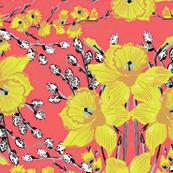 Daffodils #1