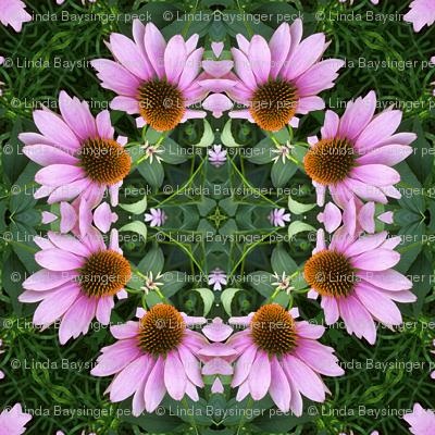 Coneflower Mandala