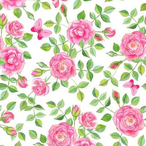 Pink Watercolor Roses & Butterflies on White large version