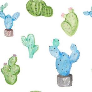 Sweet cactus watercolor