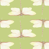 Dragonfly Pattern - Lucky Woodlands