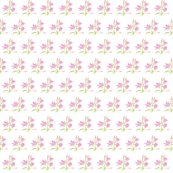 Rrrbb48_lilly_in_pink_shop_thumb