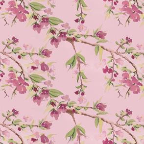 Spring_Blossoms_1
