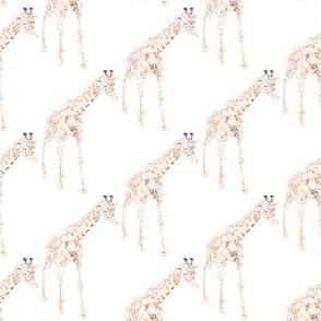 Tiny Scribble Giraffes on white