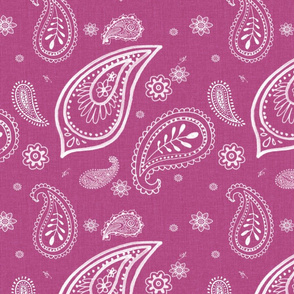 pink_paisley_large