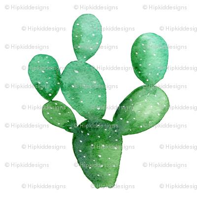 """Cactus Paddle 4"""""""