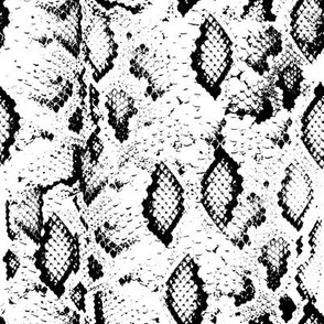 Snake skin texture. Seamless pattern black on white background. 3
