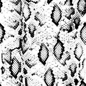 Snake skin texture. Seamless pattern black on white background. 3