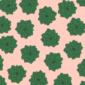 Scattered Succulents - Pink