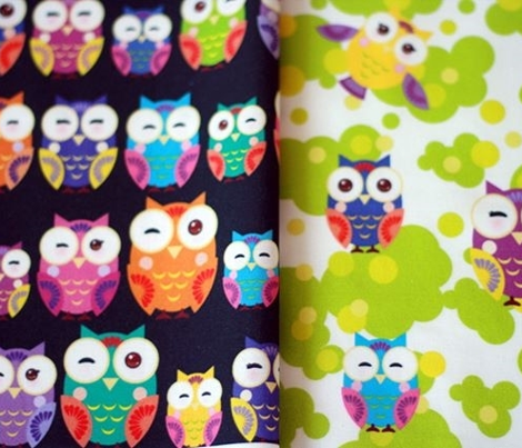 owl bright colorful owls on black background. illustration