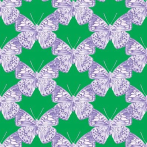 Lavender Butterfly Trellis on kelly green
