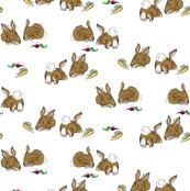 Dreaming Bunnies