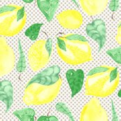 Rrlemons-03_shop_thumb