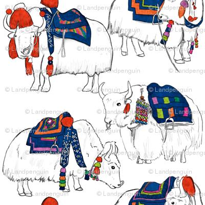 Tibetan Yaks in Color