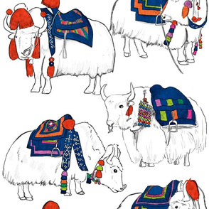 Tibetan Yaks in Color