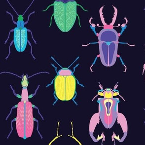 Pop Art Beetles Dark Big