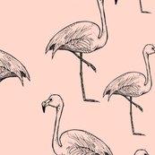 Flamingos_on_peach_shop_thumb