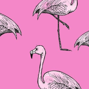 Brighter Pink Flamingos - Larger Size