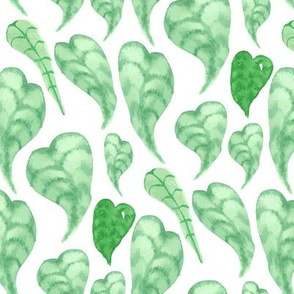 Tropical Green Leaf Leaves Lemon Tree Plant_Miss Chiff Designs