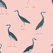 Grey Heron Pattern