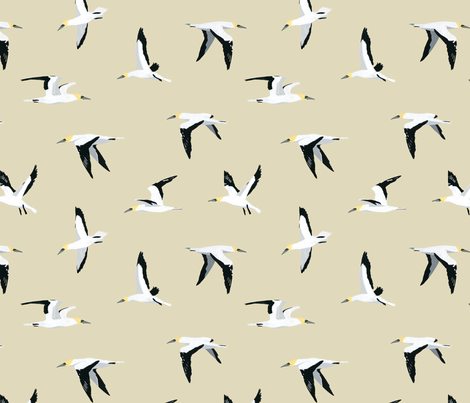 Gannet Pattern fabric by melissa_boardman on Spoonflower - custom fabric