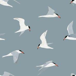 Tern Pattern