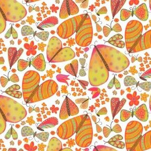 Colorful Moths and Butterflies