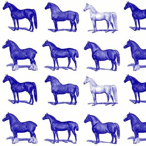 Horses in Blue