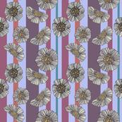 Daisy stripe 1