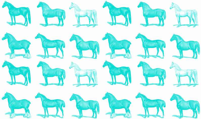 Horses in Turquoise  fabric by flower&bee on Spoonflower - custom fabric