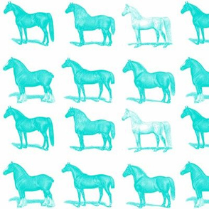 Horses in Turquoise