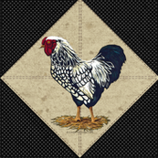 Silver Laced Wyandotte Rooster Dots