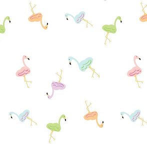 Flamingo around NC XL