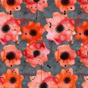 Poppies_on_dark_gray_shop_thumb
