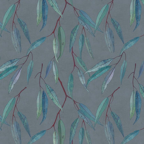 Eucalyptus leaves on grey