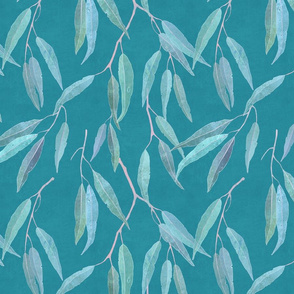 Eucalyptus leaves on light blue