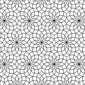 06245556 : SC3 V234R : outline