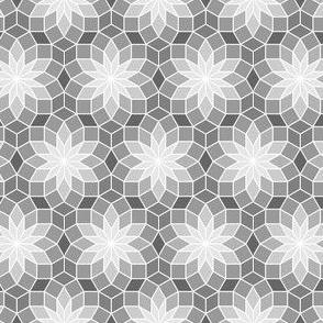 06245557 : SC3 V234R : grey