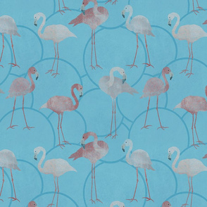 Walk with pink flamingos on bright blue