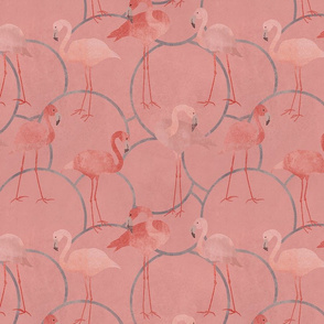 Walk with pink flamingos on coral pink