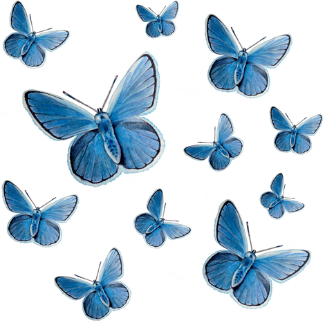 blue butterfly flight fabric by redbriarstudio on Spoonflower - custom fabric