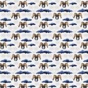 blue mountain bighorn sheep