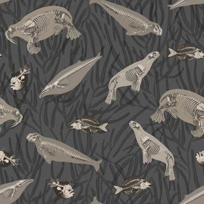 Sea Skeletons