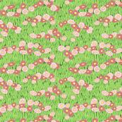 Seaside Daisies