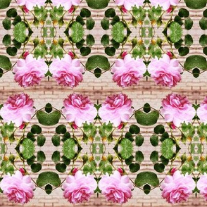 Pink Rose Crosswise Stripes