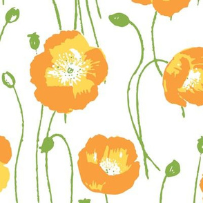 poppies - orange